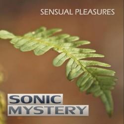 Sonic Mystery - Summer Breeze