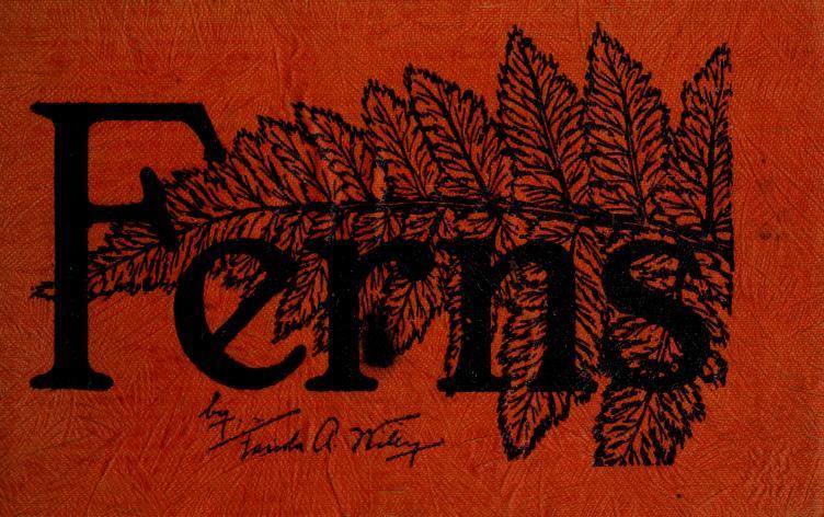 Ferns of northeastern United States by Farida Anna Wiley